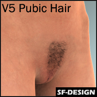 3D Pubic Hair for Victoria 5 (V5)