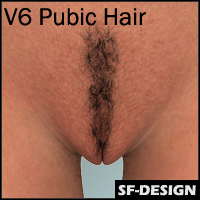 3D Pubic Hair for Victoria 6 (V6)