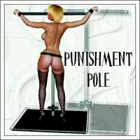 SynfulMindz' Punishment Pole