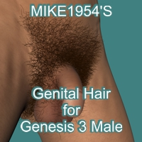 Genital Hair for Genesis 3 Male