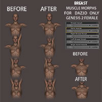 Breast Muscle Morphs For Genesis 2 Female