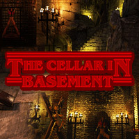 The Cellar In Basement