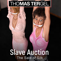 Slave Auction-The Sale Of Silk