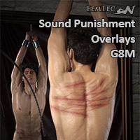 L.I.E. Sound Punishment Overlays For G8M