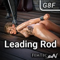 Leading Rod For Taming Collars