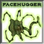 Davo's Facehugger!