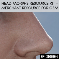 Head Morphs Resource Kit And Merchant Resource For Genesis 3 Males
