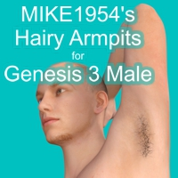 Hairy Armpits For Genesis 3 Male