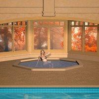 richabri_New_Indoor_Pool_Pic3.jpg