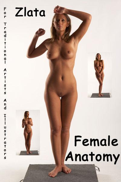 Vanessa Menga Nude