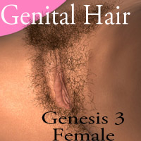 Genital Hair for Genesis 3 Female